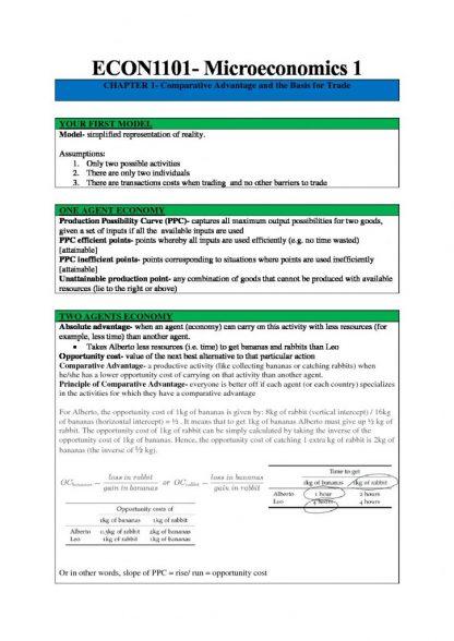 ECON1101 comprehensive Microeconomics notes – UNSW
