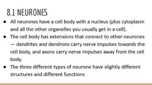 Topic 8: Grey Matter notes – Edexcel A Level Biology A (Salters-Nuffield)
