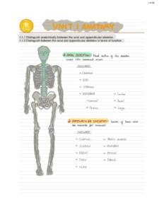 IB Sports, Exercise and Health Science (SL) all core summary SEHS notes