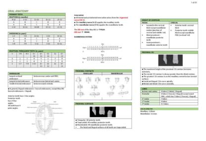Oral Anatomy (NBDE) review notes